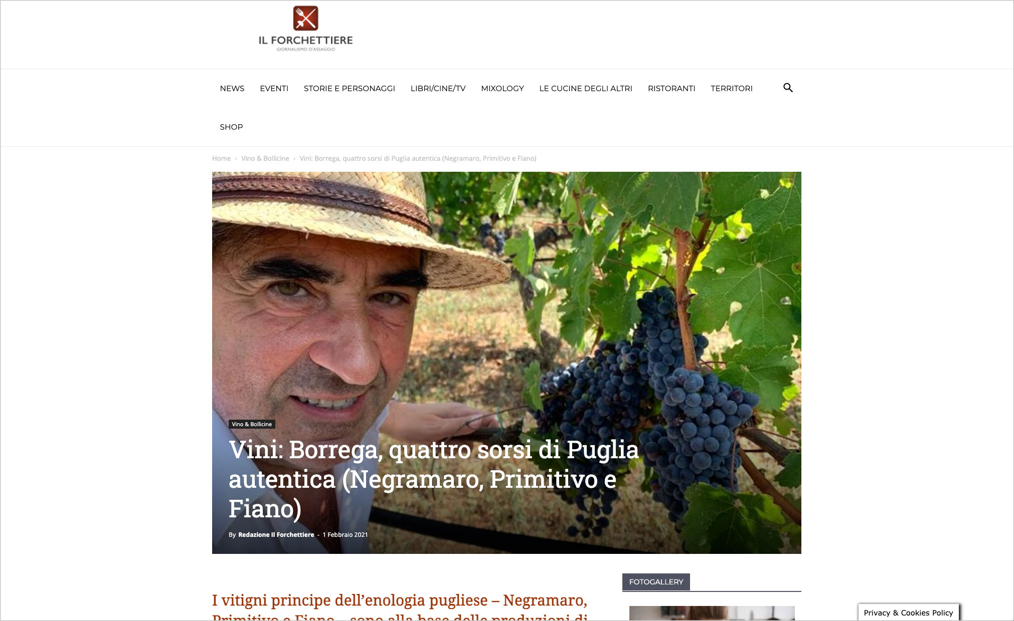 Vini: Borrega, quattro sorsi di Puglia autentica (Negramaro, Primitivo e Fiano)